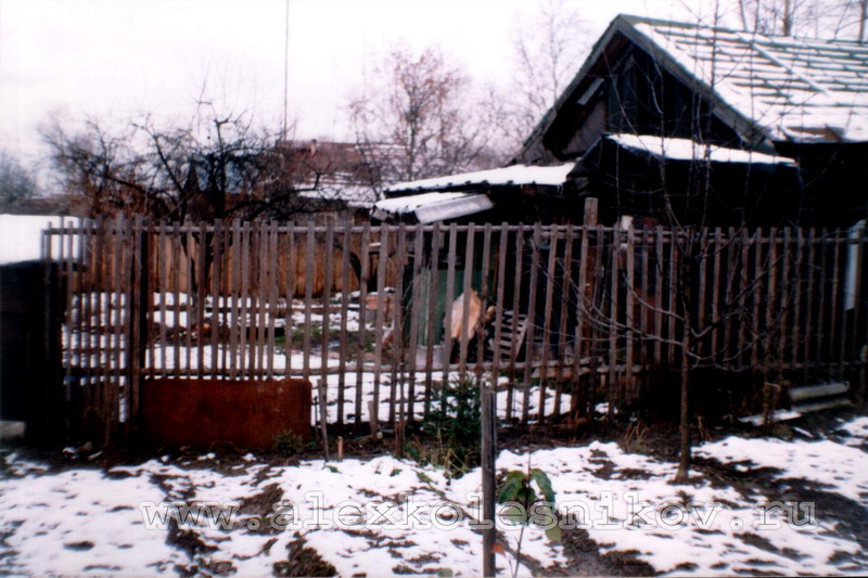 Вид на наш двор с соседнего участка